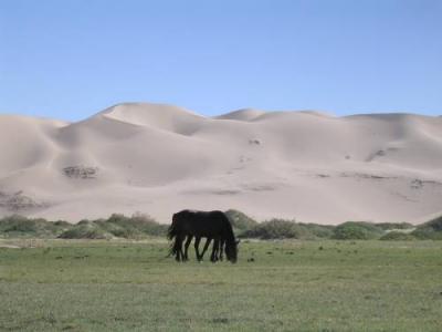 Las dunas que cantan