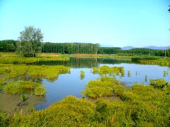 Los estanques de Sils - III