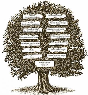 Ramas y raíces - VII